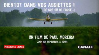 PLTV PROJO FILM OGM
