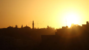 Israel,Palestine : la guerre secrète du Mossad grande