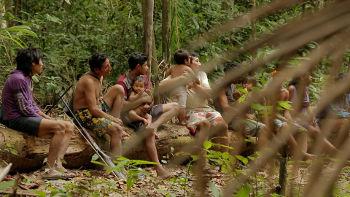 Indiens d'Amazonie : le dernier combat grande